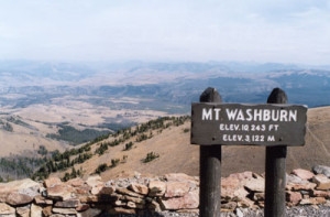 washburn sign